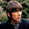 USA: nouvel arbre pour George Harrison après une invasion de...