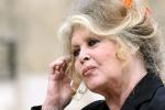 Brigitte Bardot schrijft de kat van Lagerfeld een anti-bont-brief