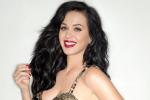 Katy Perry best betaalde artiest ter wereld