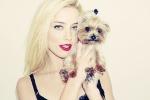 Vrouw Johnny Depp ontsnapt aan veroordeling wegens illegale invoer honden